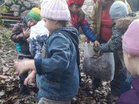 помогаем убирать листья